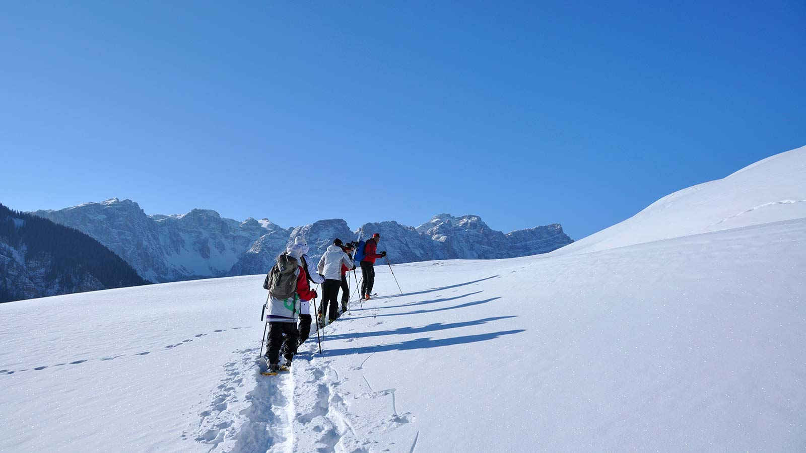 Hikers with snowshoes walk in single file in a snowy valley in the Natural Park Fanes-Sennes-Braies