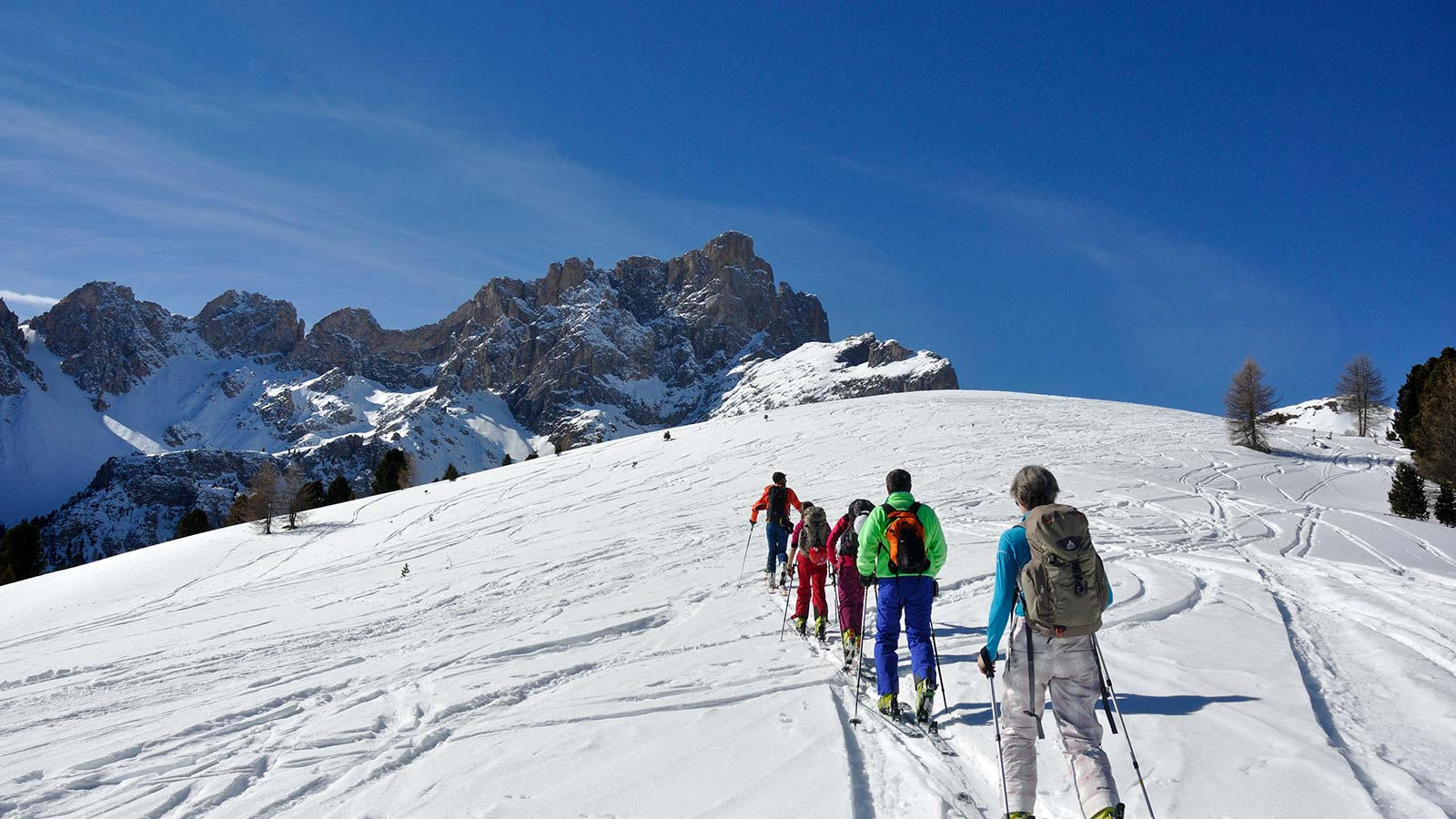 Skiers in a row in the Natural Park Fanes-Sennes-Braies